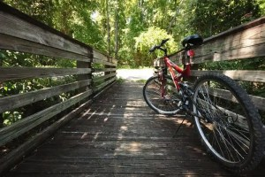 13 free and cheap bike trails in Miami-Dade