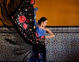 Free Flamenco dance show