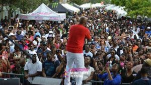 overtown music and arts festival crowd