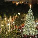 Tree lightings and Santa's arrival in Miami