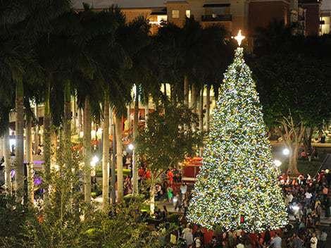 Public Christmas Tree Aventura In Miami Locations 2020 Holiday light displays in Miami   Miami on the Cheap
