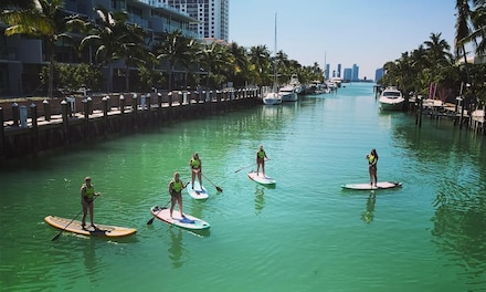 One- or Two-Hour Paddleboard Rental and Instruction for One, Two, or Four from TKS Miami (Up to 66% Off)