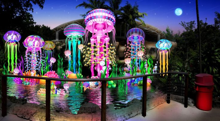 Jungle Island Luminosa deals