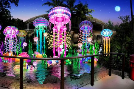 Jungle Island Luminosa deal