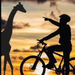 Zoo Miami: Ride your bike through the grounds UPDATED