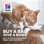Deals alert: Get $5 off Hill's pet food