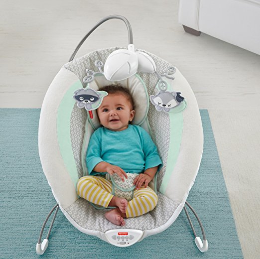 Fisher-Price Moonlight Meadow Deluxe Bouncer 7