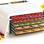 Desidratador De Alimentos Excalibur 5 Bandejas – 110V
