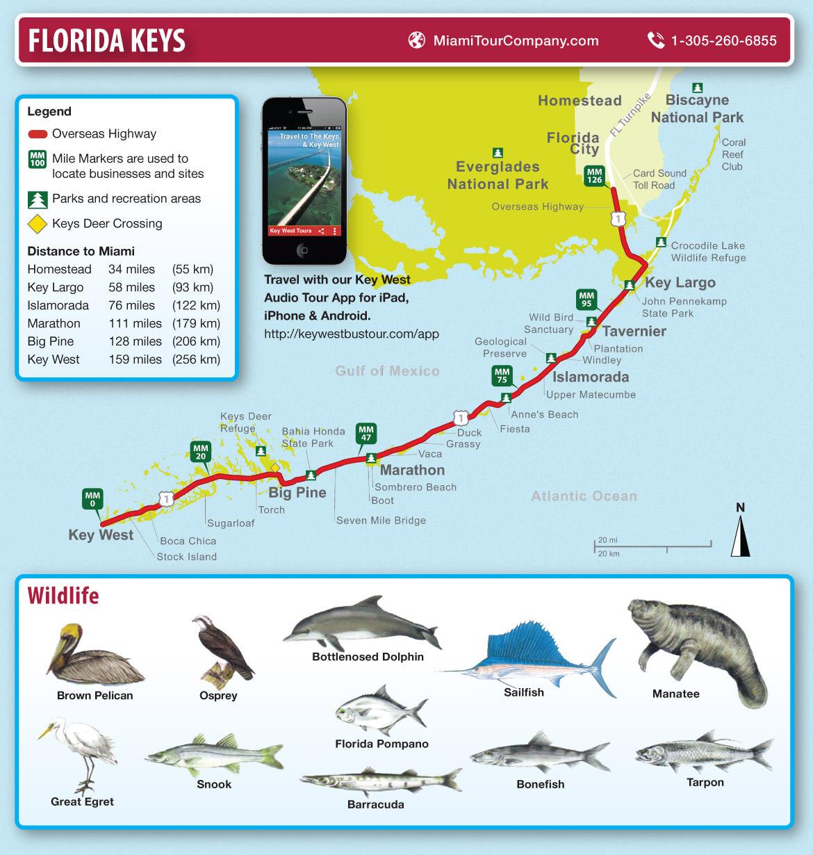 Map Of Florida Keys And Key West Miami Tour Company