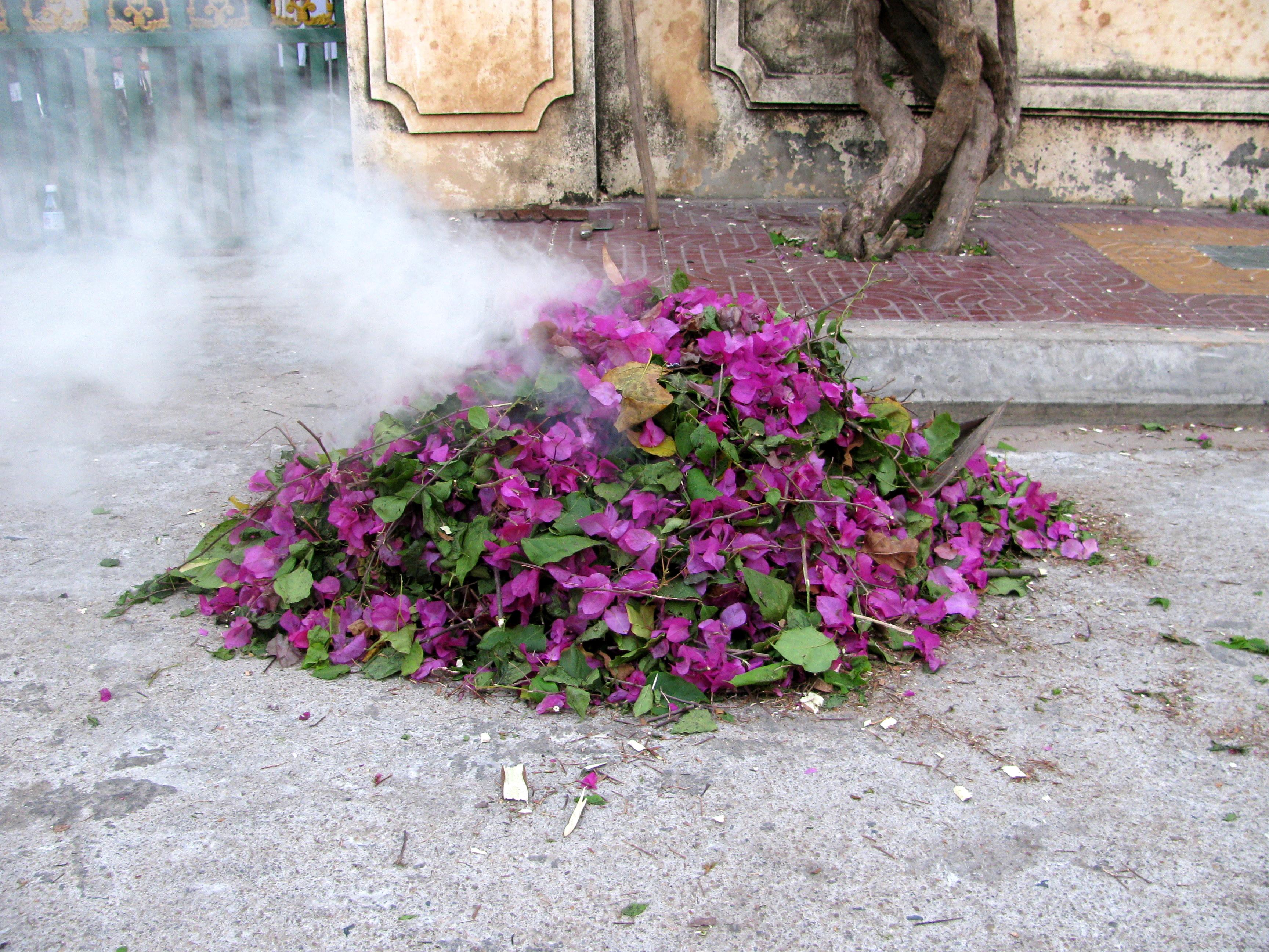Burning foliage/trash, Phnom Penh, Cambodia