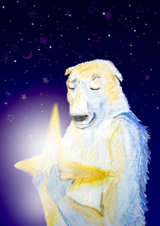 polar-bear-star5-web