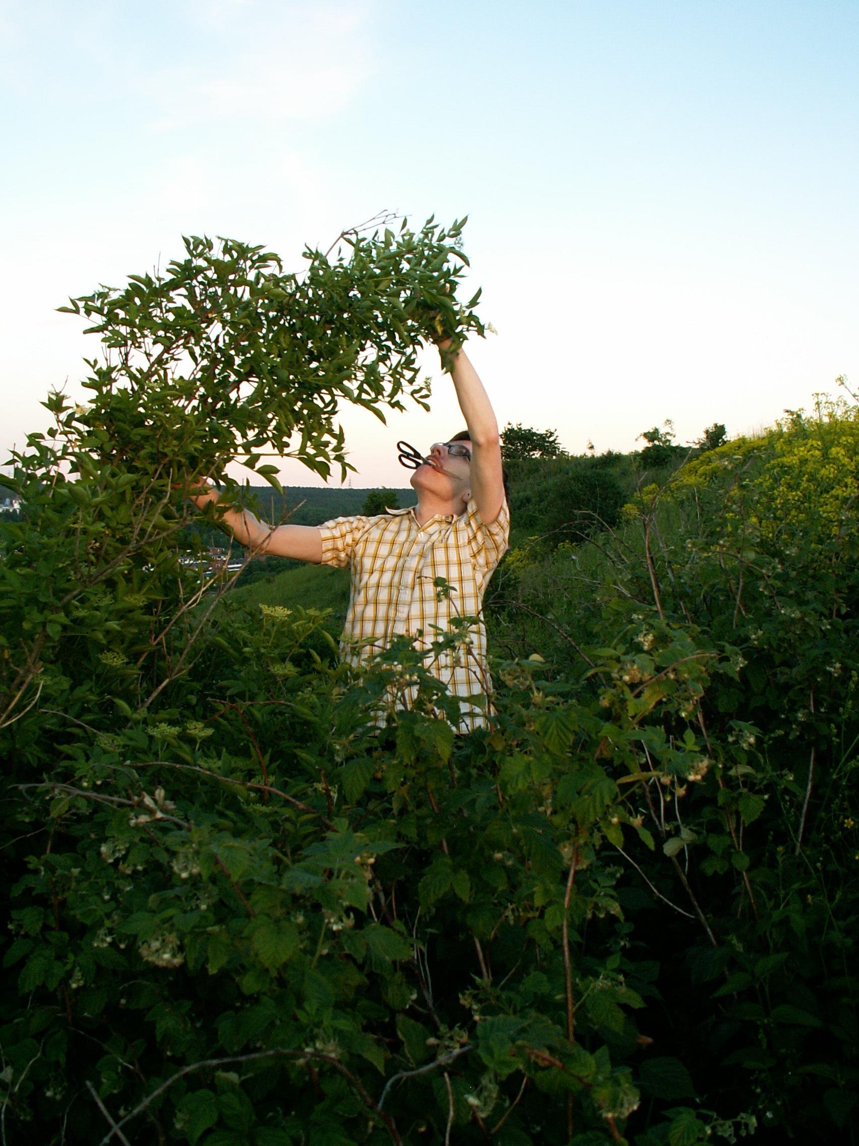Jakob i plockartagen 2007