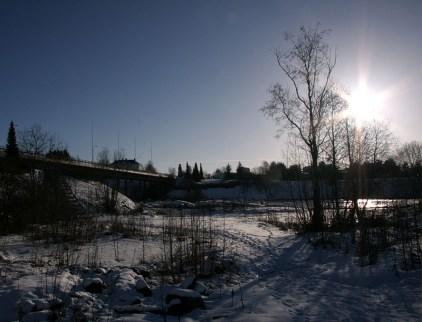 Sunshine in February