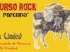 2011-cartelconcursorock41