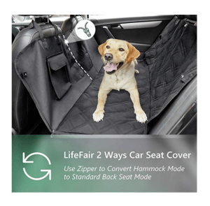 The Best Dog Car Barriers