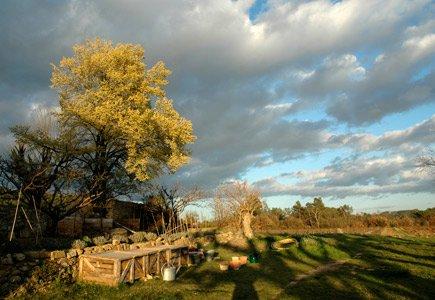 provence-garden-435