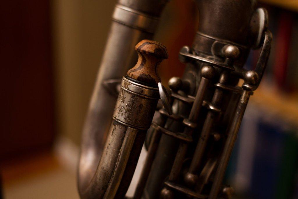 Exotic Wood Saxophone Neck Plug