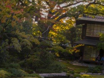 murin-an-saturday-october-25-2014-kyoto-micah-gampel_8452