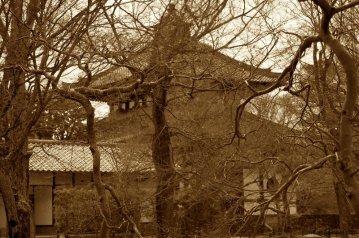 tofukuji-temple-building-kyoto-micah-gampel-2012