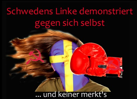Schwedens Linke