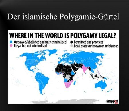 Islam+Polygamie