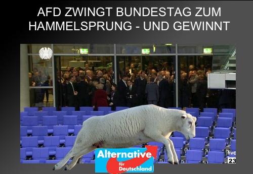 """AfD zwingt Bundestag zum """"Hammelsprung"""" - und gewinnt"""