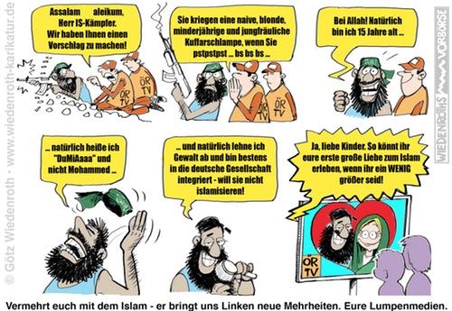 Wiedenroth-Karikatur: Über den politischen Wahnsinn in Deutschland