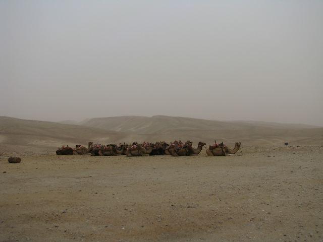 В Иудейской пустыне