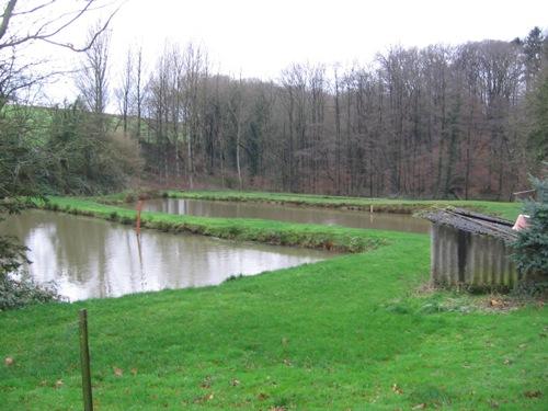 Forellenteich in Ratingen