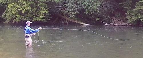 wupperfishing