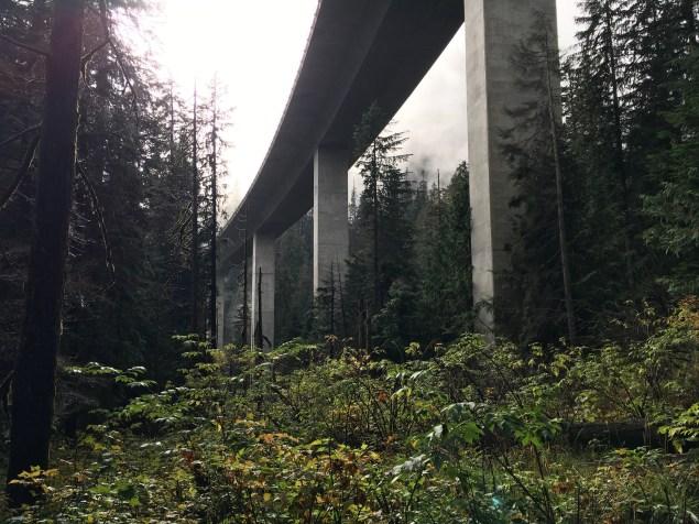 Hiking near Seattle.