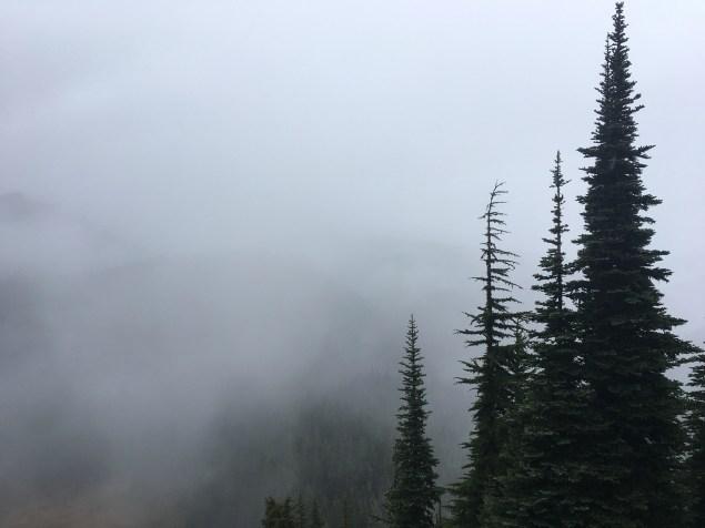 Rainy foggy hike