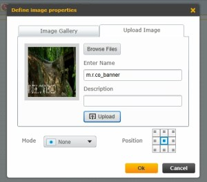 Add an existing image from the catalog, or upload a new one.