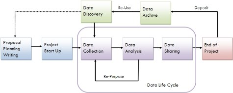 Research Lifecycle (Source: UVa Library