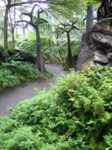 Part of Evolution Garden