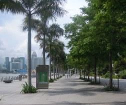 Tree lined walkway