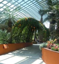 Flower Dome walkway