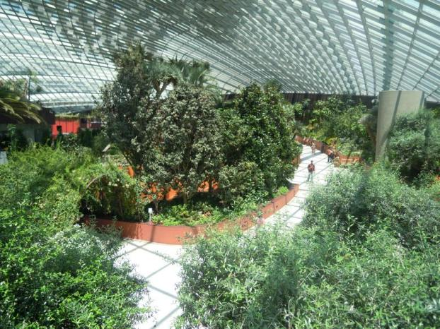 Flower Dome from 2nd story