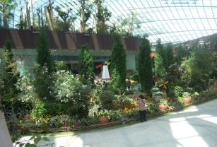 Flower Dome scene