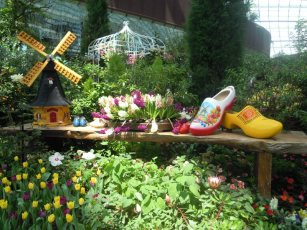 Flower Dome Holland scene