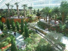 Flower Dome scene from above