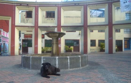 fountain in Chorro de Quevedo Square