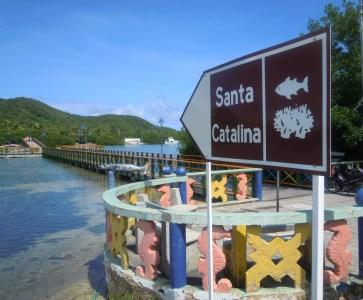 14 bridge santa catalina