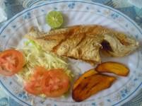 34 fish plate
