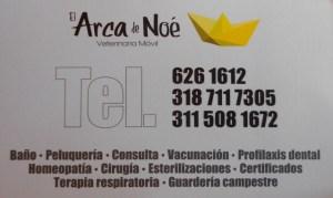Vet Card Angelica 640