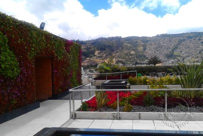 View from rooftop garden