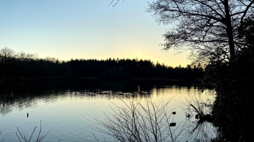 Sunset with clear blue sky. There are trees at the centre of the image with water below. A picturesque lake during a beautiful sunset.