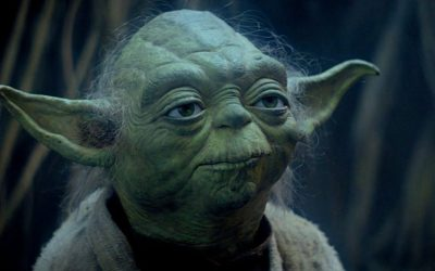 Quote of the Day by YODA!