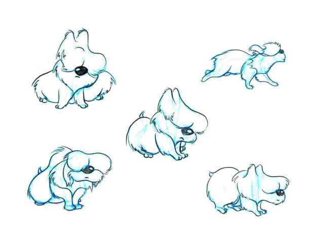 Chester-Dog-3