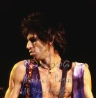 Keith Richards head over shoulder CLOSEUP [The Rolling Stones - Rupp Arena, Lexington Ky 12-11-81]